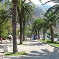 Посмотреть альбом «6 сентября 2011 г. Черногория. Котор»