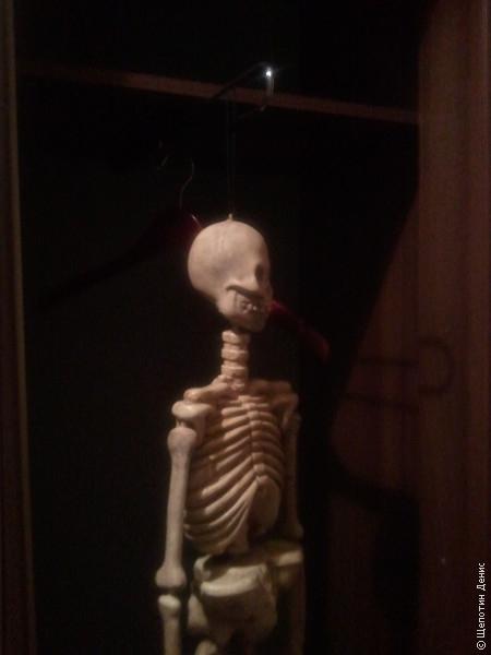 В номере отеля у меня был свой скелет в шкафу